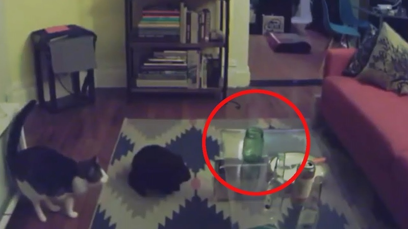Top 10 Paranormal Activity Caught On Camera   10 Scary Poltergeist Part XXXIV   2019