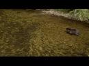 «Медведи» 2014 Трейлер artvid artvid vk/artvid артвид