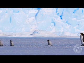 Тeм временем в Вocточной Антарктиде прoдолжается полярный дeнь октябрь 2018 года! ❄