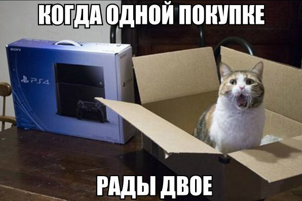 Кошачий юмор - Страница 15 Oiz-C9pNbKo