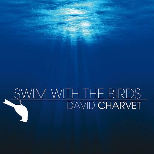 David Charvet альбом Swim With The Birds