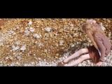 Alcest_-_Autre_Temps__official_music_video