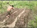 Primitive technology: vegetable cultivation Manufacture of agricultural tools