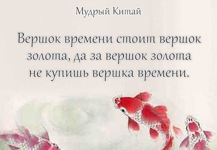 https://sun1-10.userapi.com/c543107/v543107663/68a07/zhB1h-vp2bo.jpg