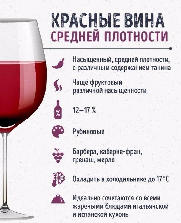 Гид по винам, который сделает из вас настоящего сомелье
