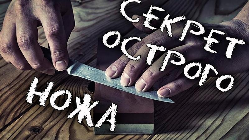 Как сделать самый острый нож? rfr cltkfnm cfvsq jcnhsq yj;? rfr cltkfnm cfvsq jcnhsq yj;? rfr cltkfnm cfvsq jcnhsq yj;?