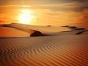 Desert caravan de Aaron Kenny