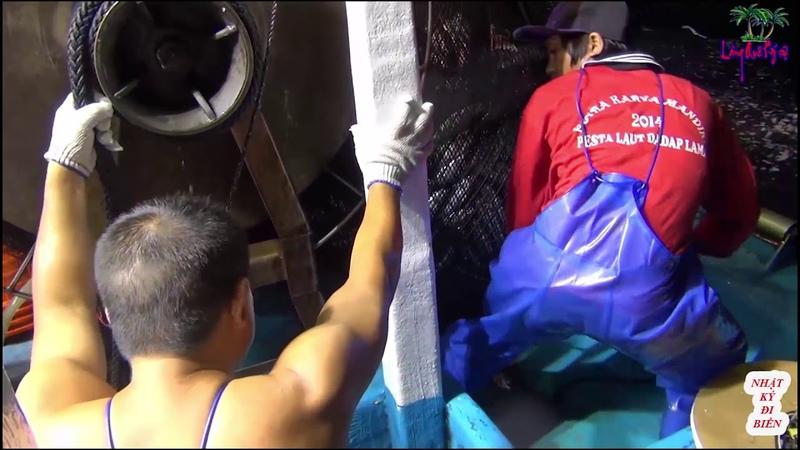 đánh bắt cá bằng lưới mành phần 2 - sea fishing by net fishing- nhật ký đi biển 24