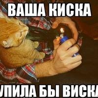 Иван Кокутенко, 9 января 1999, Курган, id172372594