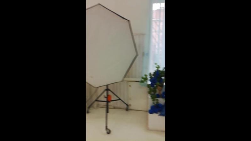 белый зал фотостудия BIRD