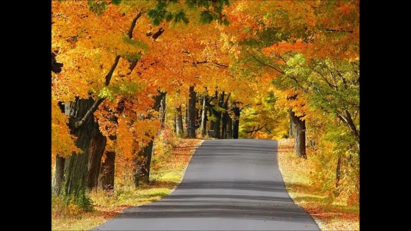 Осень, милая, шурши!.mp4
