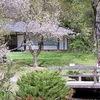 Экологическая акция в Японском саду