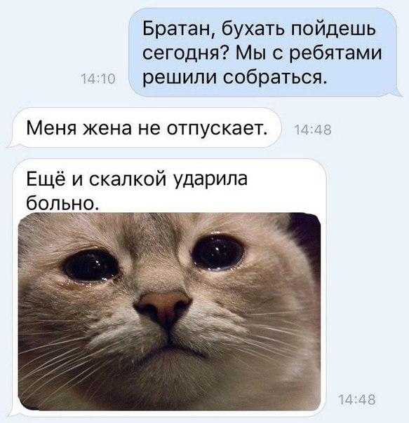 Фото №456253101 со страницы Люси Бушуевой