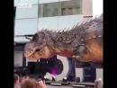 Динозавры живы