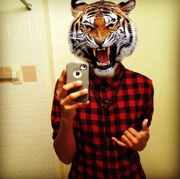 Как заменить лицо на тигра