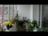 Как обшить балкон пластиком: сколько стоит (видео, Кривой Рог)