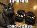 Антон Митюрёв фотография #6