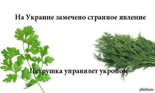 петрукр