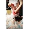 """БОЛЬШИЕ ШОКОЛАДНЫЕ КИНДЕРЫ on Instagram """"Внутри Огромного Шоколадного яйца Розы и Шампанское👍👍👍пасхапсков2019пасхаподарокпсковприкольныйподарок"""""""