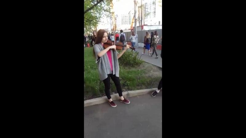 Скрипачки