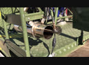 На газе как на бензине...1UZ, Digitronic iQ 8