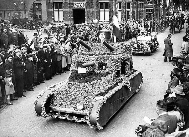 Замаскированная цветами голландская бронетехника.