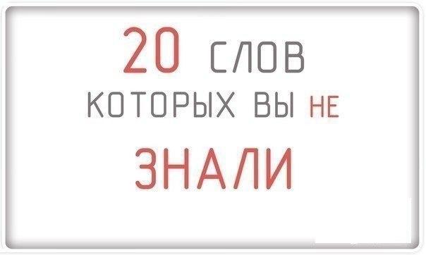 https://pp.userapi.com/c635100/v635100389/27b7/X-0TT3DokRM.jpg