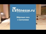 Мёртвая тяга с гантелями  (Vfitnesse.ru)