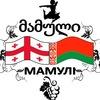 Грузины Беларуси