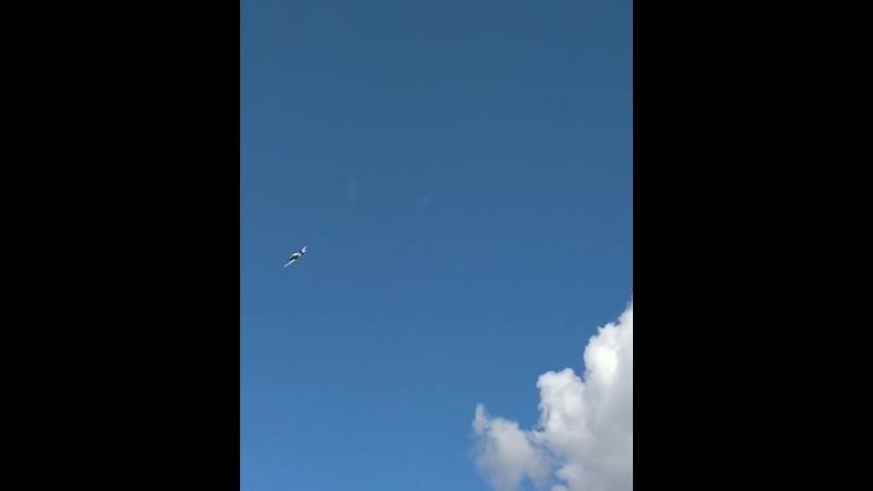 Высший пилотаж лётная практика в Алферьево