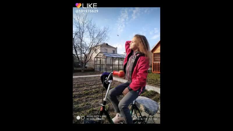 Like_6681554575048486180.mp4