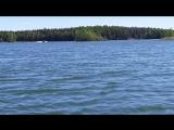 Карьер рыбалка Стрижи