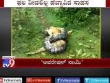 Спасение собаки при нападении питона в Чикмагалур (Dog Escapes Python Attack in Chikmagalur)
