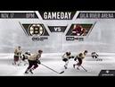 NHL 19 PS4 REGULAR SEASON 2018 2019 Boston BRUINS VS Arizona COYOTES 11 17 2018 NBCSN