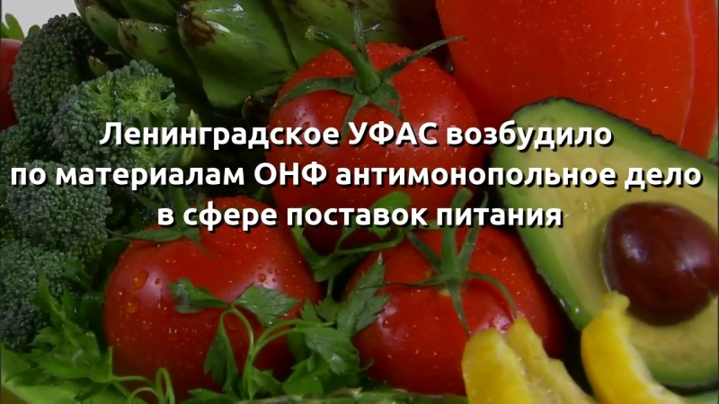 Ленинградское УФАС возбудило по материалам ОНФ антимонопольное дело в сфере поставок питания