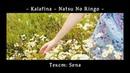 【Kaido Ren】Natsu no Ringo (RUS cover) Original by Kalafina