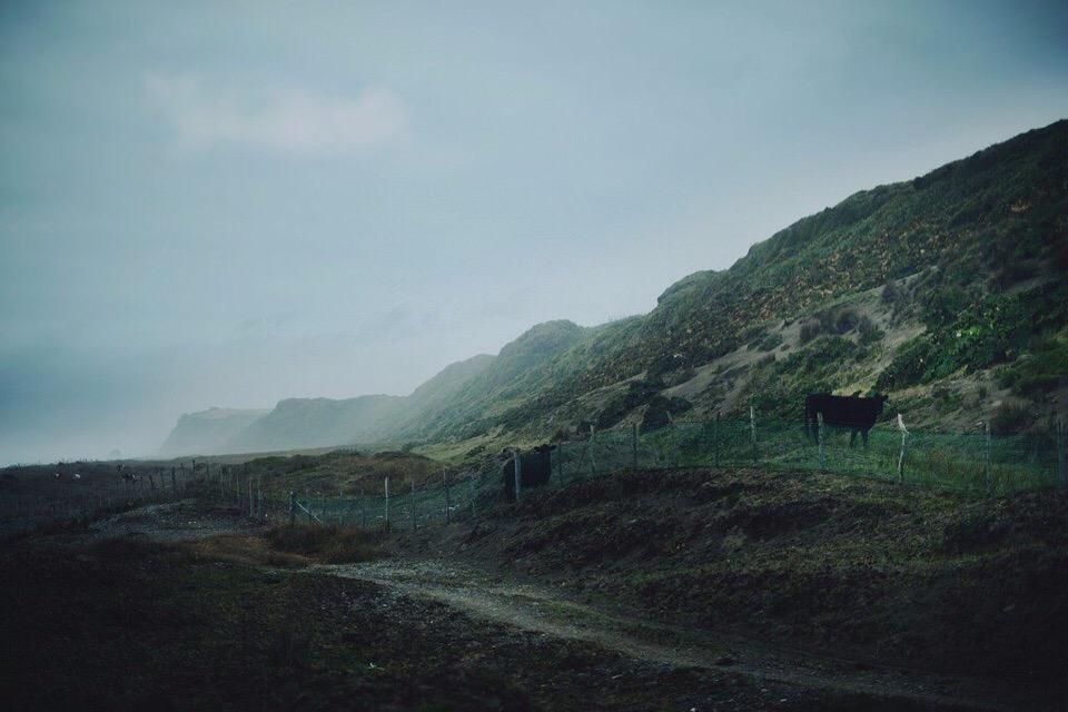Роскошные пейзажи Норвегии - Страница 3 OmQoMQMc9yI