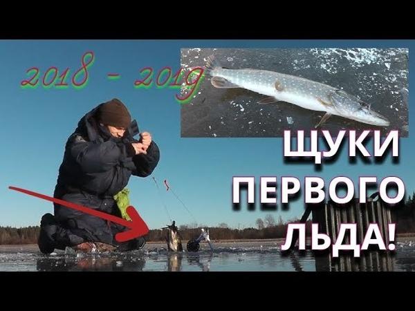 Щуки Первого Льда. РЫБАЛКА НА ЖЕРЛИЦЫ. Наконец покорилось это озеро - Болен Рыбалкой №579