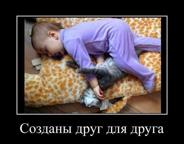 http://cs319623.vk.me/v319623641/616e/luX_BknVwBw.jpg