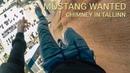 Mustang Wanted climbs the chimney in Tallinn, Estonia