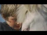 Run Wild, Run Free 1969 (trailer)