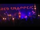 Red Snapper - (на бис!)