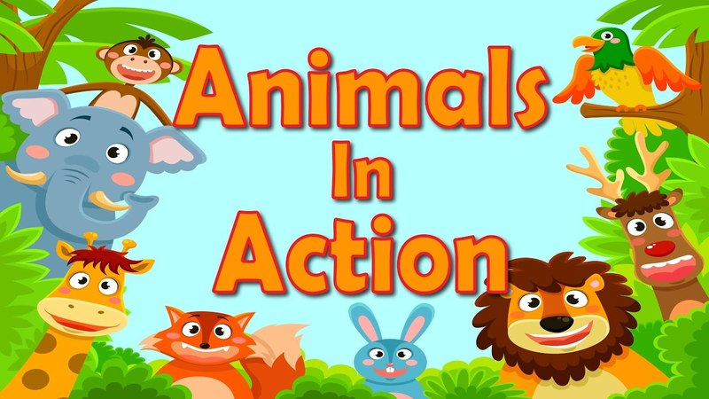 Animals In Action | Brain Body Builders | Exercise Fitness for Kids | Jack Hartmann