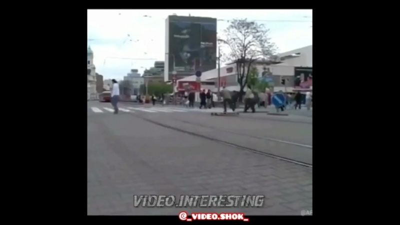 _video.shok_BnokrchFXLe.mp4