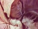Северный олень. Документальный фильм 1971 год  Этнография