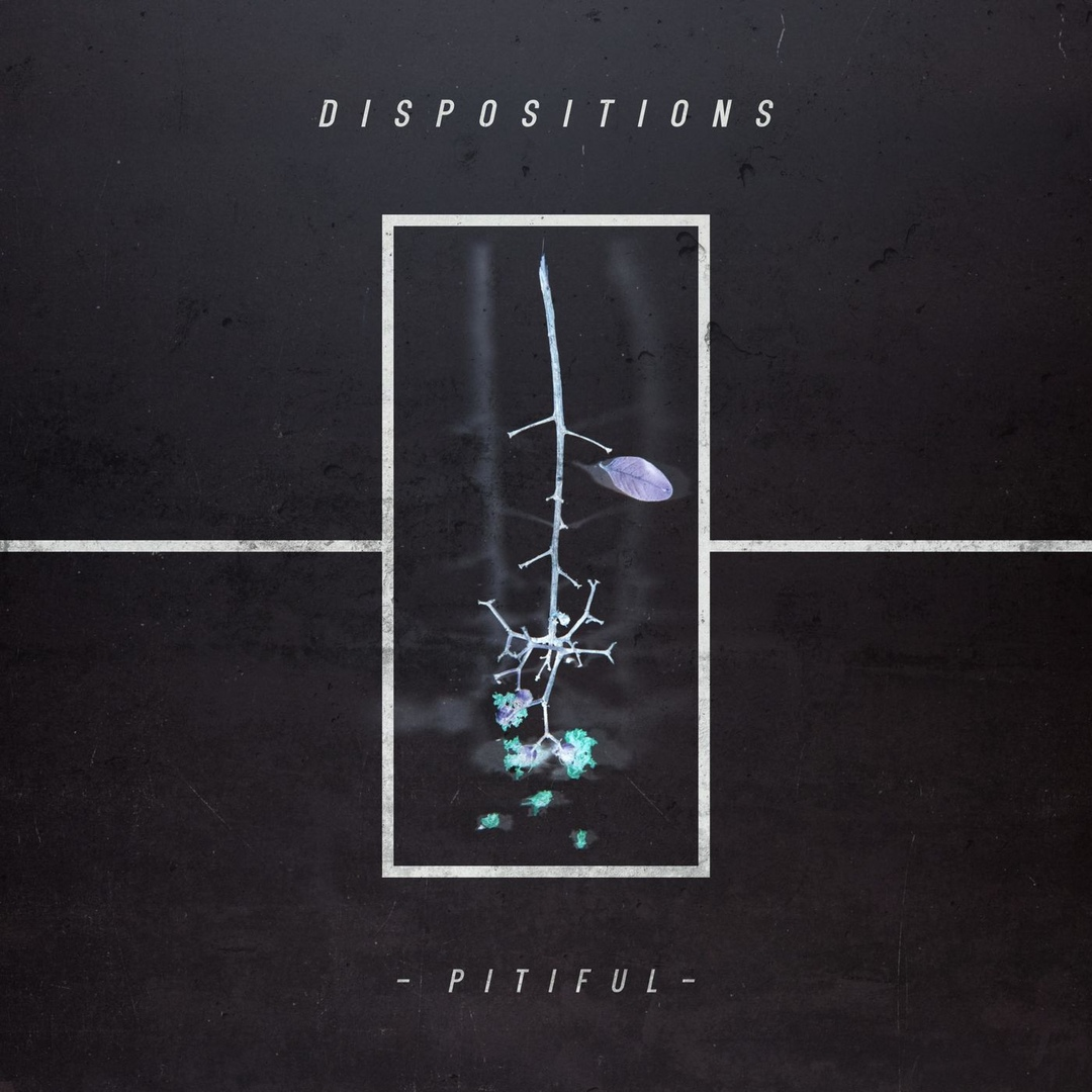 Dispositions - Pitiful [single] (2019)