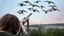 Отличная Охота на Гуся Коллекция 2019 Excellent Goose Hunting Collection 2019