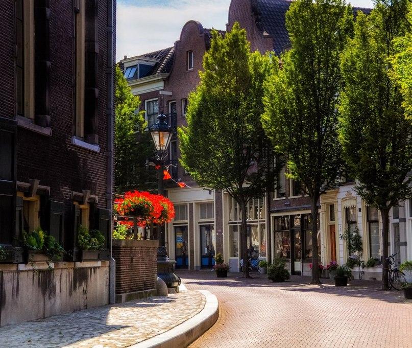 Доставка цветов и подарков в роттердаме нидерланды 52