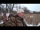 Охота с вышки на кабана в охотхозяйстве Кинделинское