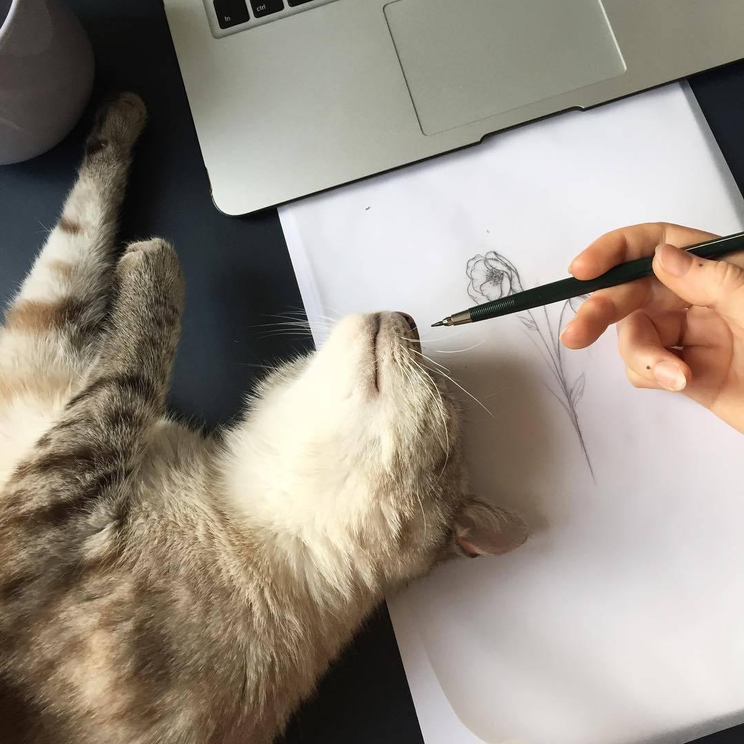 Как распознать поддельный автограф